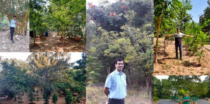 Inspiring College Principal Converts 8 Acres of Treeless Land into Mini Forest and Orchard on India Campus